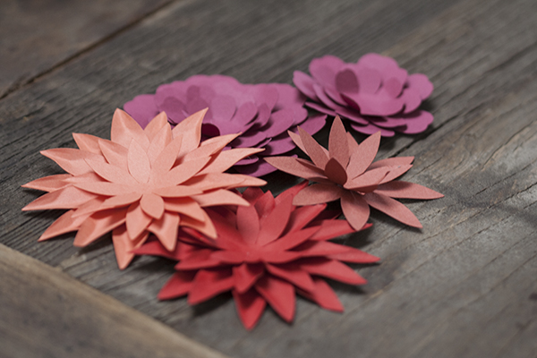 Paper flowers | Bramble Workshop