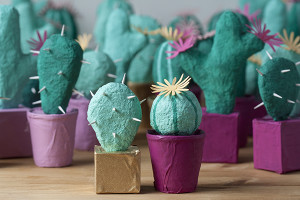 paper mache cacti for an event by bash please